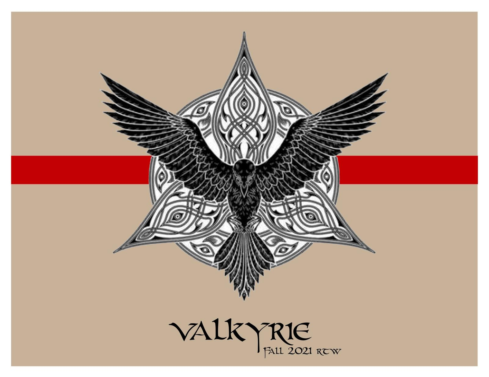 This collection was inspired by the norse mythology of Valkyries. I imagine my target customer a Valkyrie undercover in the modern world.