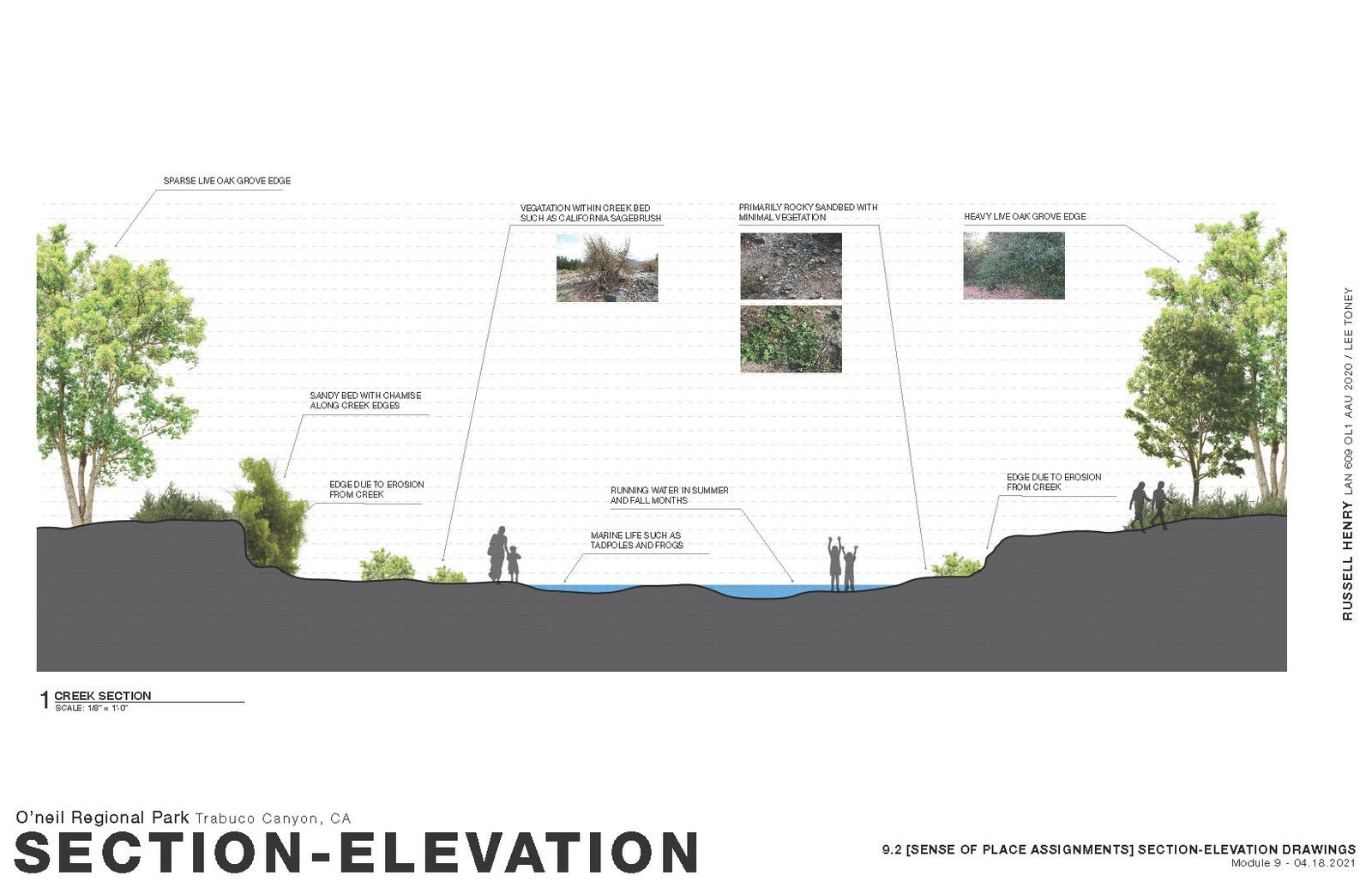 Sense of Place - Section-Elevation 1
