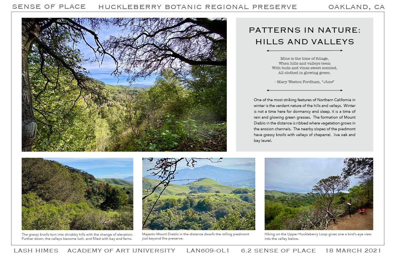 Huckleberry Botanic Regional Preserve - Patterns in Nature 1
