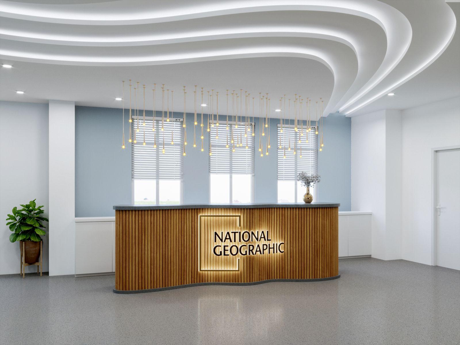 Reception - Office Area