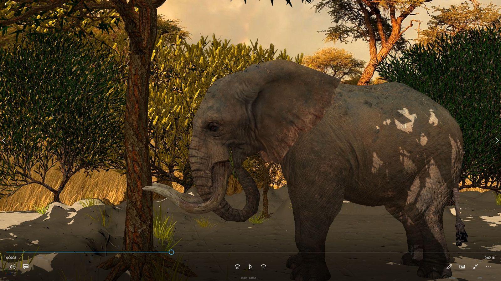 Elephant vs Tree