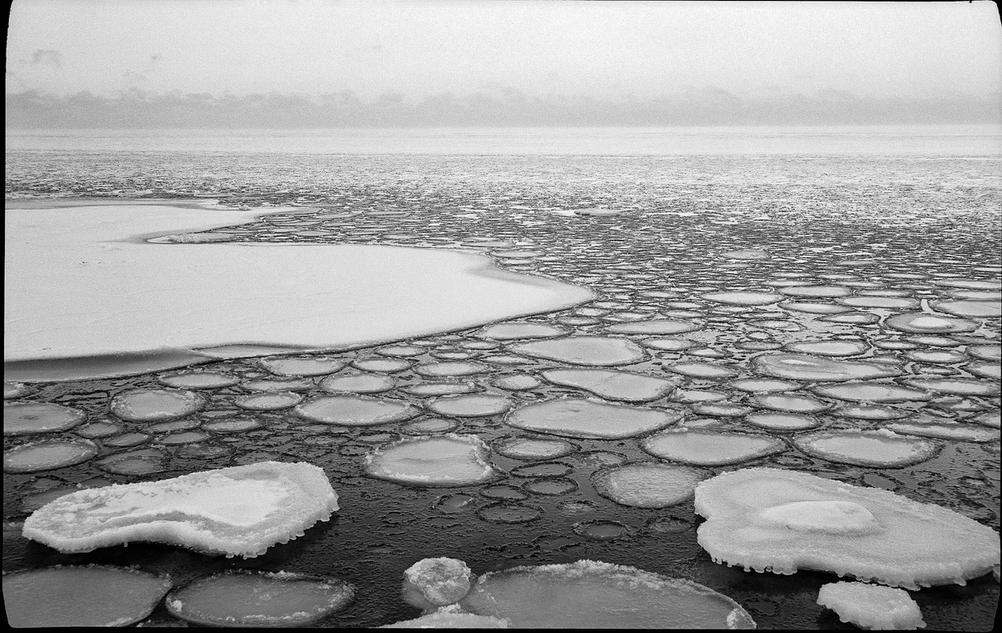 Photo of sea in cold winter.
