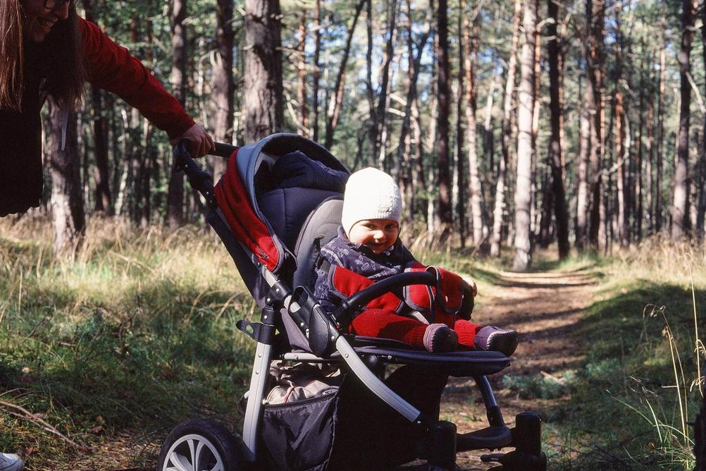 Toddler in sunny woods.