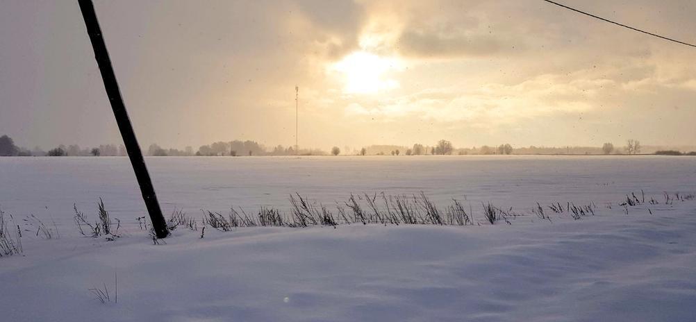Photo of sunny winter.