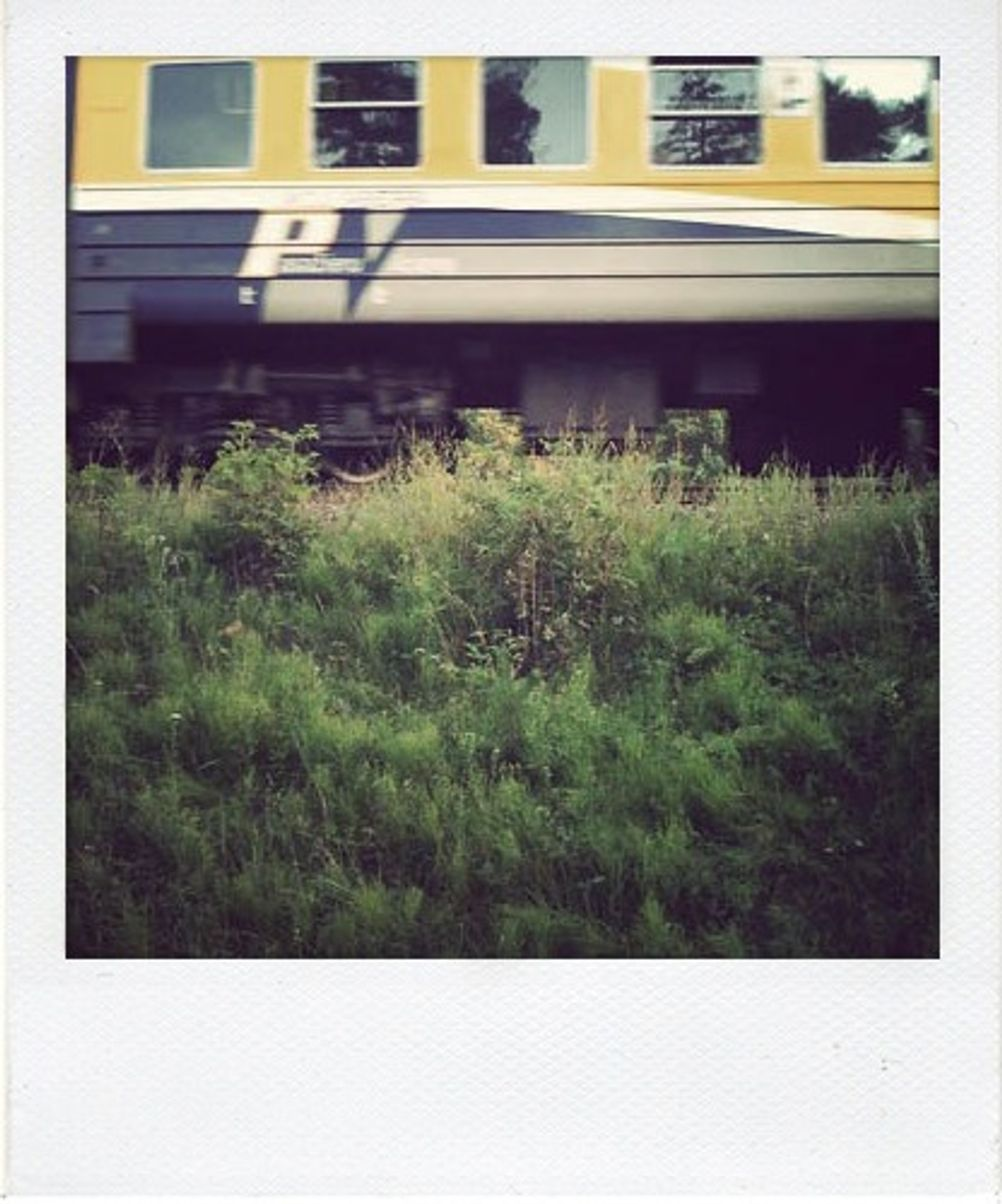 Photo of a moving train with grass in the foreground.