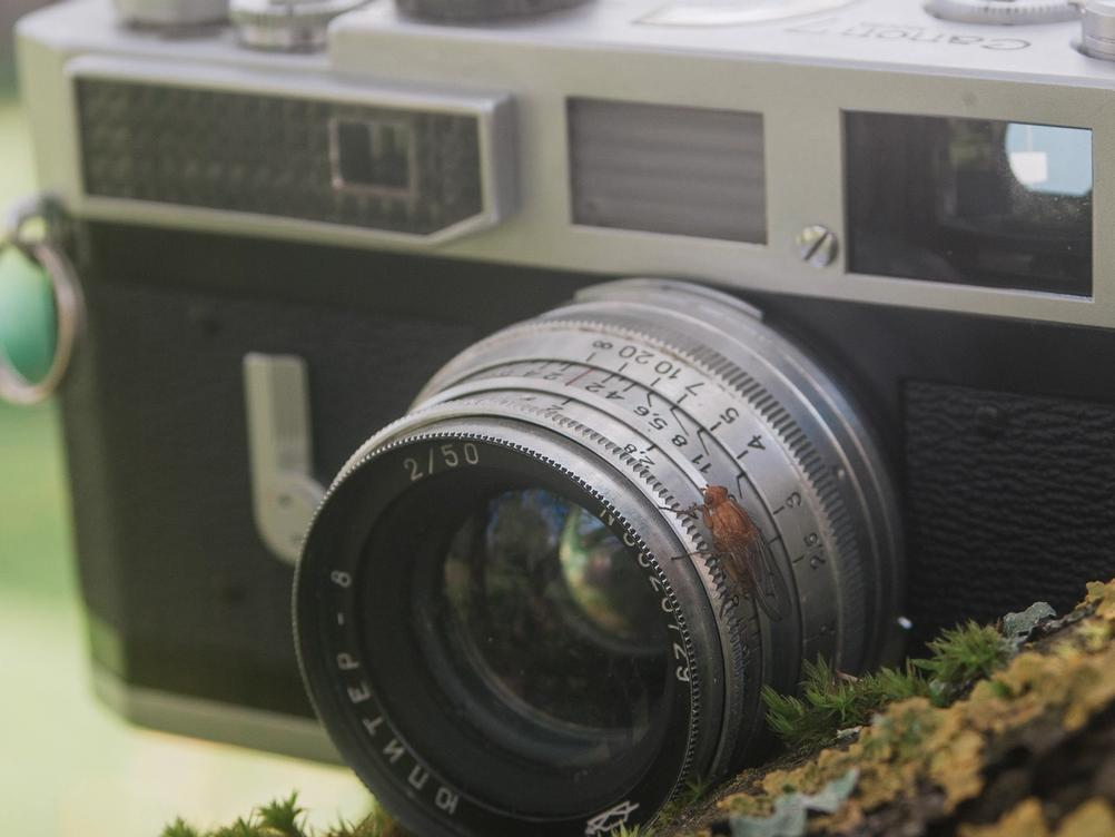 Photo of an insect that has landed on top of Jupiter-8 lens that's attached to Canon Model 7.