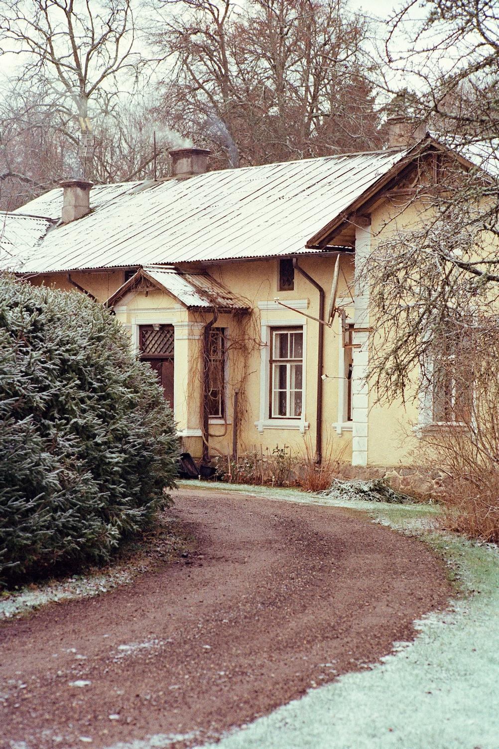 House slightly hiding behind bushes.