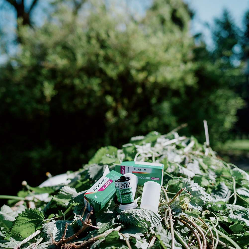 Photo of Fujifilm C200 film rolls surrounded by green colors.