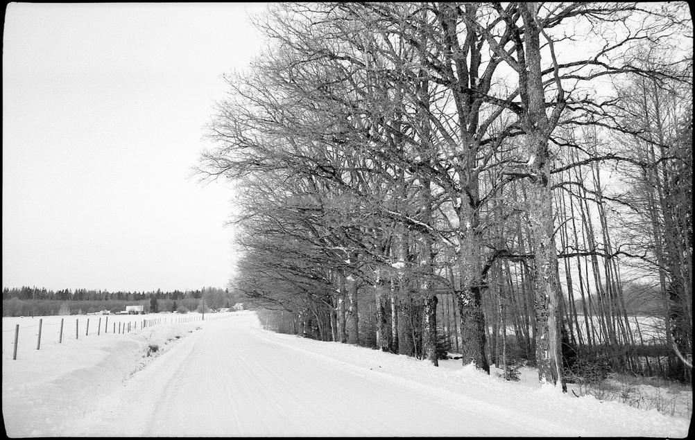 Photo of a country road in snow.