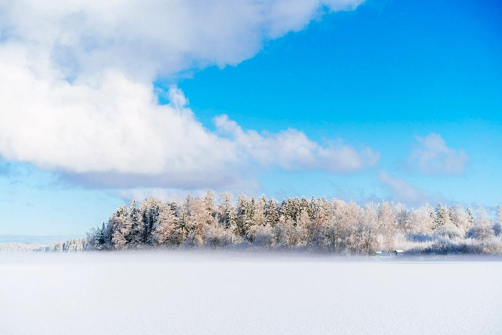 Wintery and frosty looking photo of a lake covered in light mist and trees in further distance.