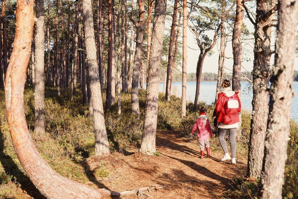 Family walking in forest next to a lake.