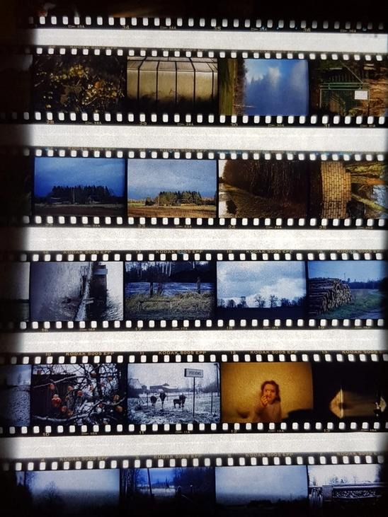 Contact print from slide film taken with a mobile phone.