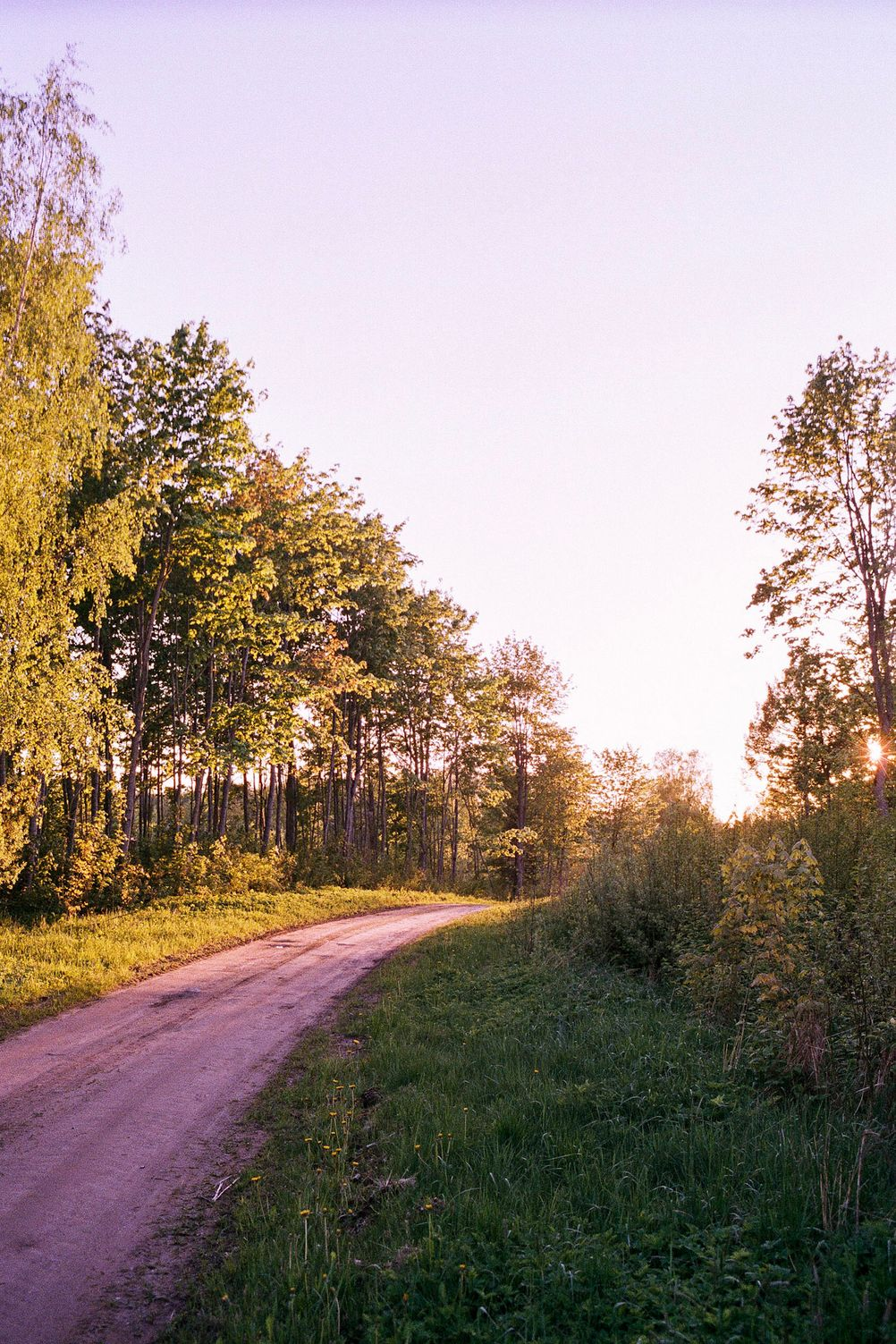 Photo of a small road colored by setting sun.