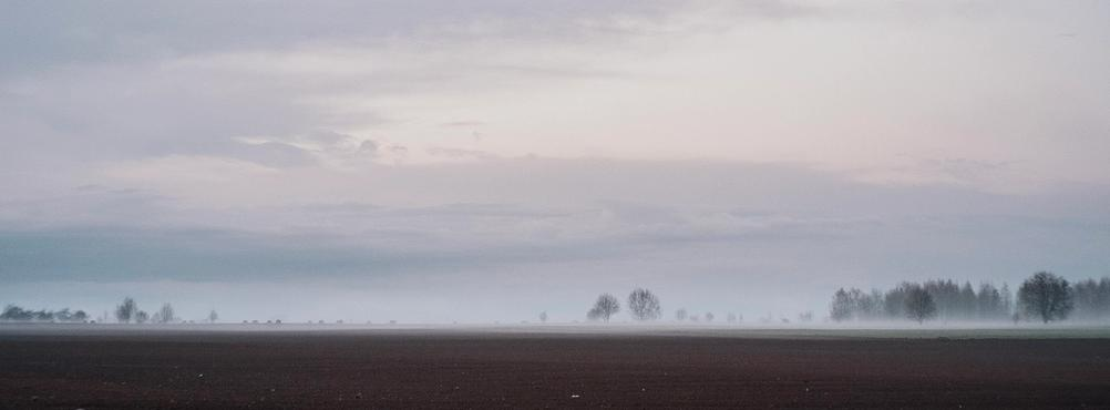 Panoramic photo of a field.