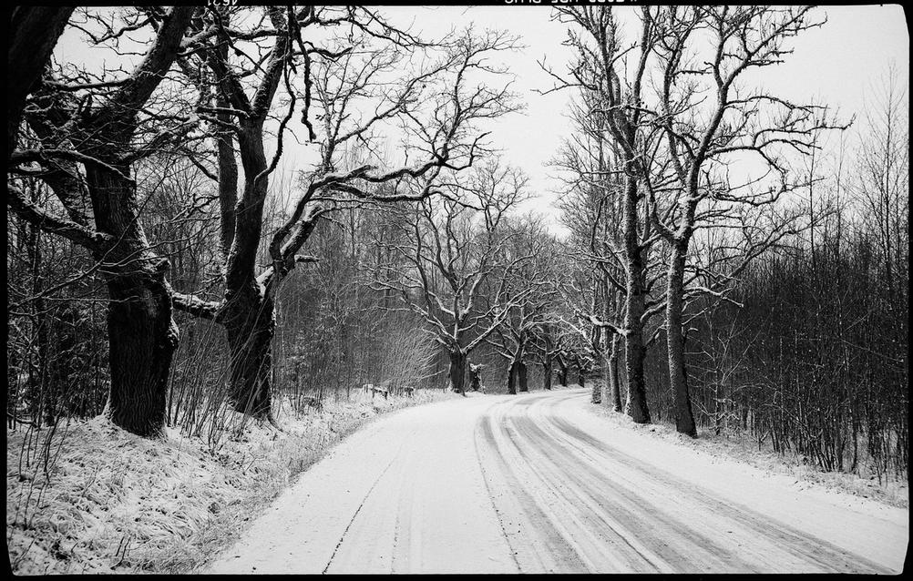 Photo of a country road in winter.