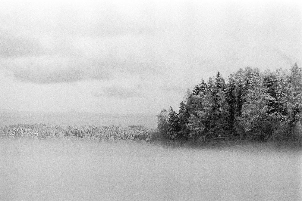 Photo of trees in a mist across a lake covered in ice and snow.