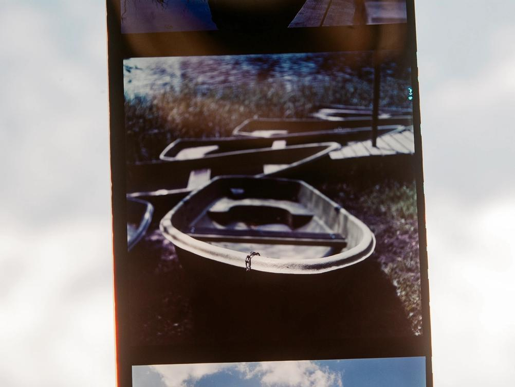Photo of Silberra Color 160 film strip with a positive on it.