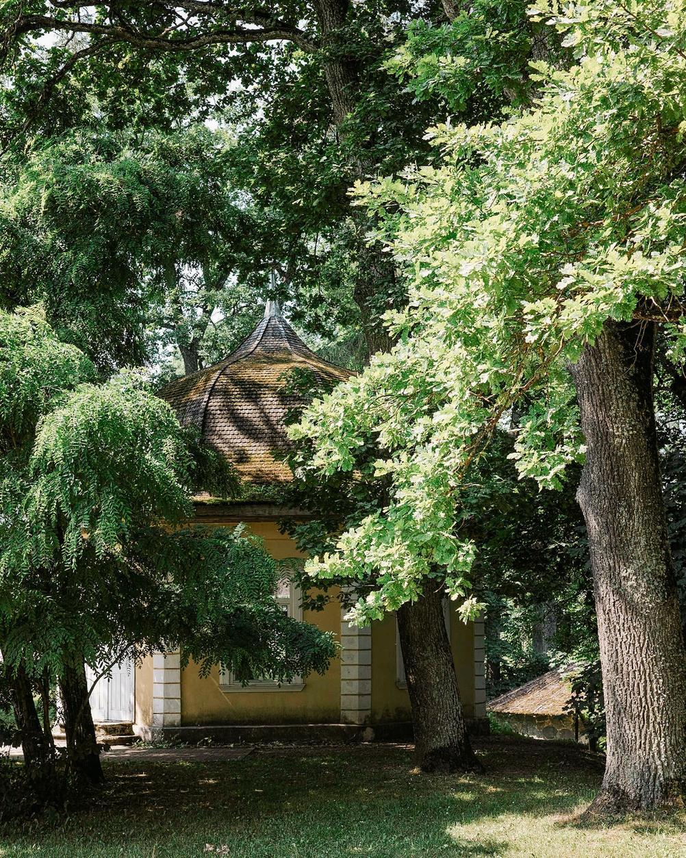 Photo of a weird building hidden in trees.