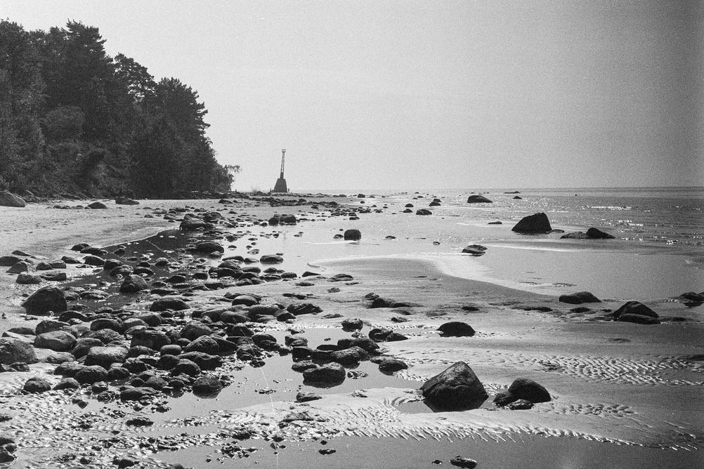 Photo of rocks on the beach.
