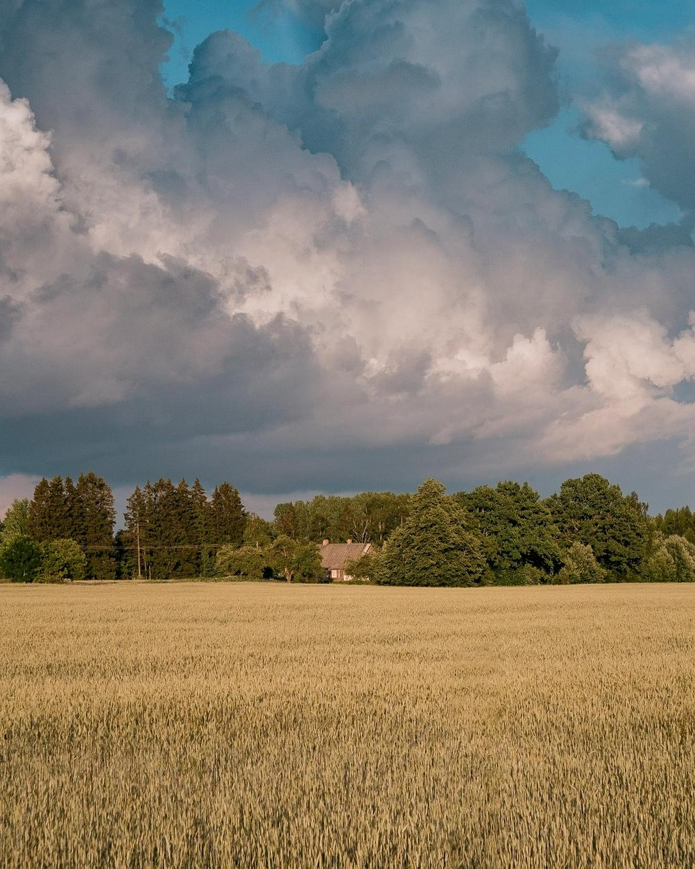 Photo of a house with field in foreground and impactful clouds in the background.