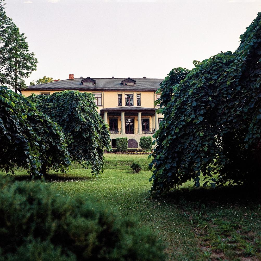 Photo of a large house hiding behind small trees.