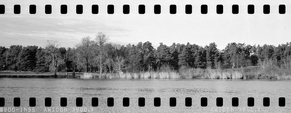 Black and white photo of a river with some land behind it.