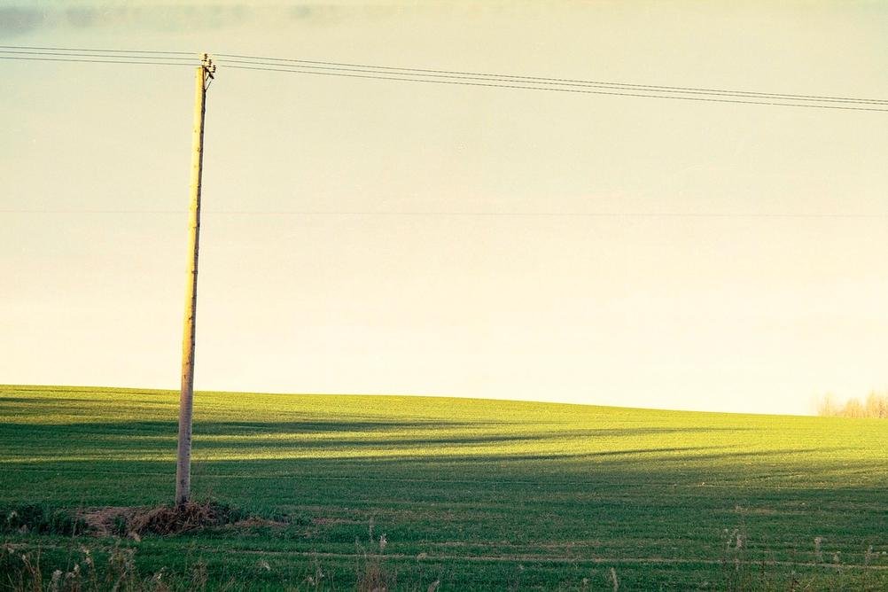 Photo of a green field.