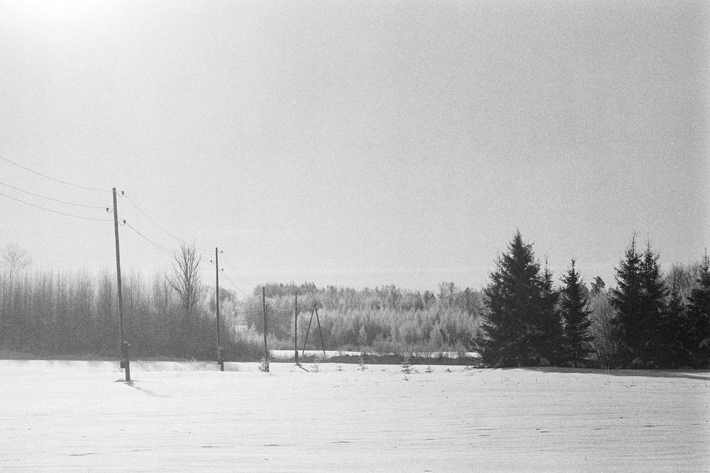 Photo of a generic winter scene.