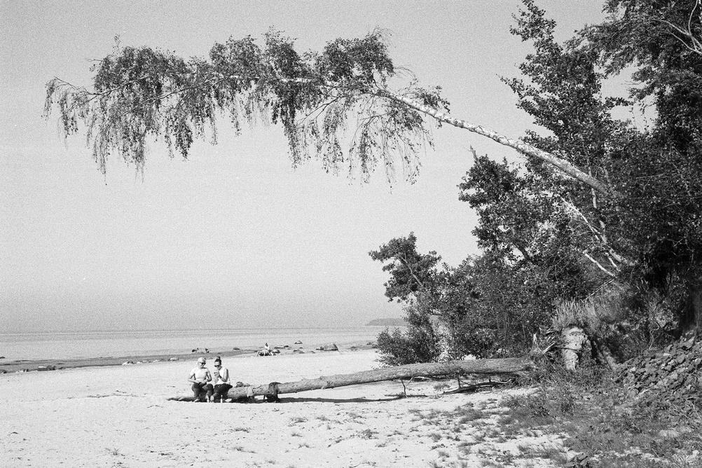 Photo of two women sitting on a tree whilst on beach. There's another tree above them that makes it look like it's falling on them.