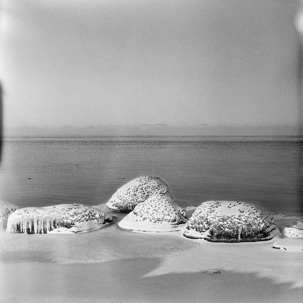 Photo of frozen rocks on the beach.