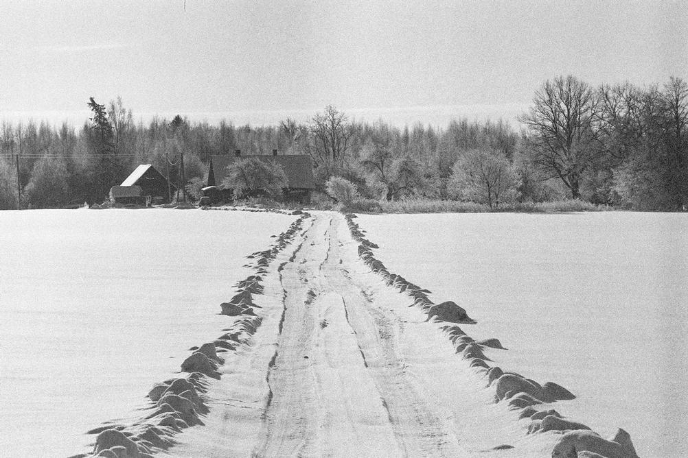 Photo of a road leading to a house during winter with snow around.