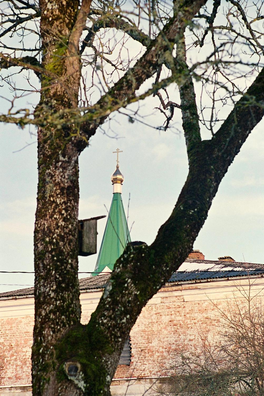 Photo of a top of a church through a tree.