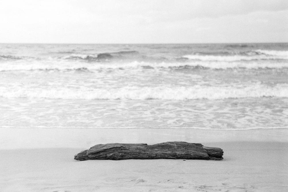 Photo of a lonely tree trunk on the beach.