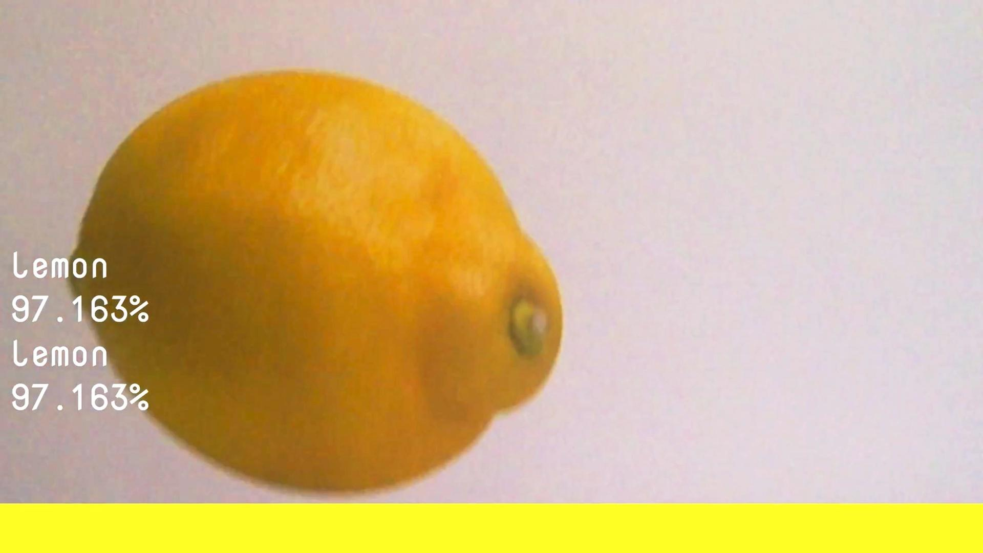 Learning to See Lemon
