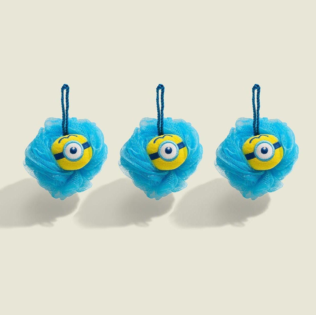 Set of shower sponges