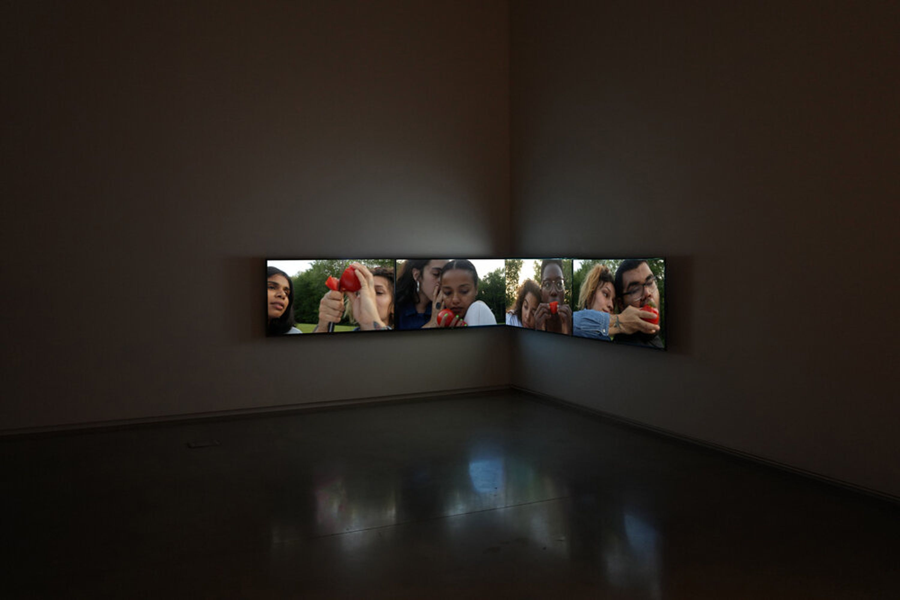 Installation view of Tomatoes (Skowhegan, ME) (2020), from the exhibition from the exhibition Unnamed for Decades, Center for Maine Contemporary Art.