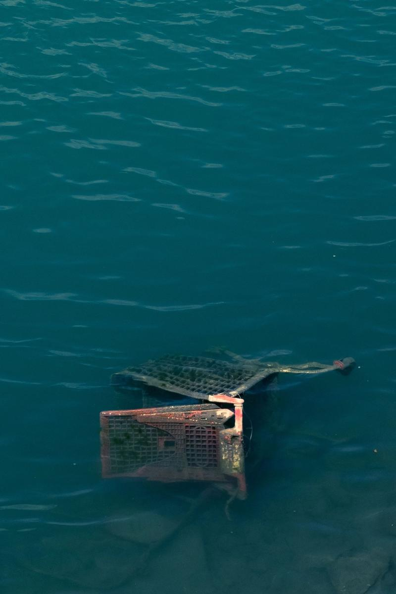 Shopping trolley in water
