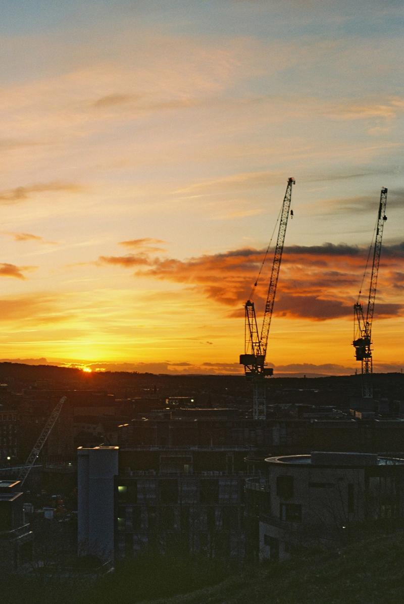 Cranes in sunset