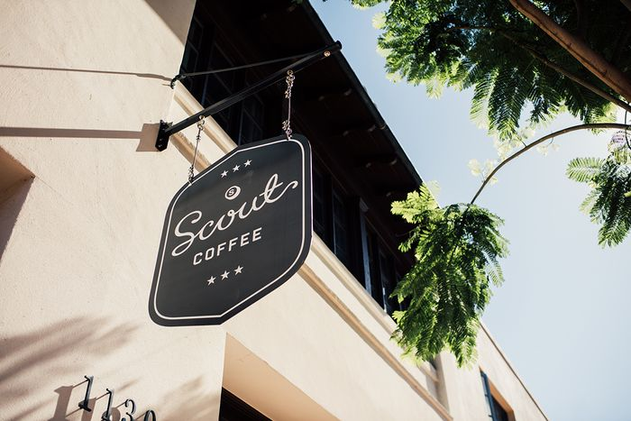 scout coffee sign handing from a building with palm branches in the background