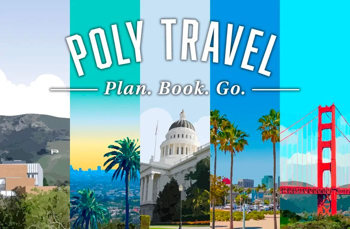 Poly Travel Reminders Graphic