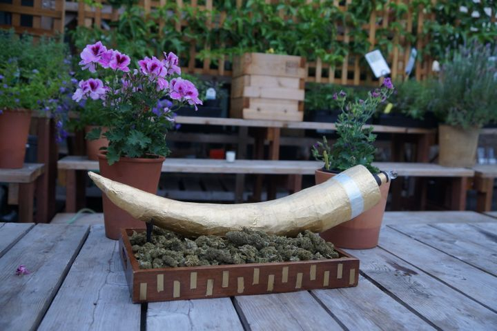 $4k 'Elephant Tusk' Joint Sold at Auction.