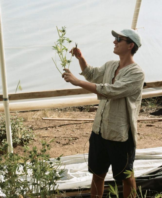 Interview: Lex Corwin: CEO Stone Road Farms