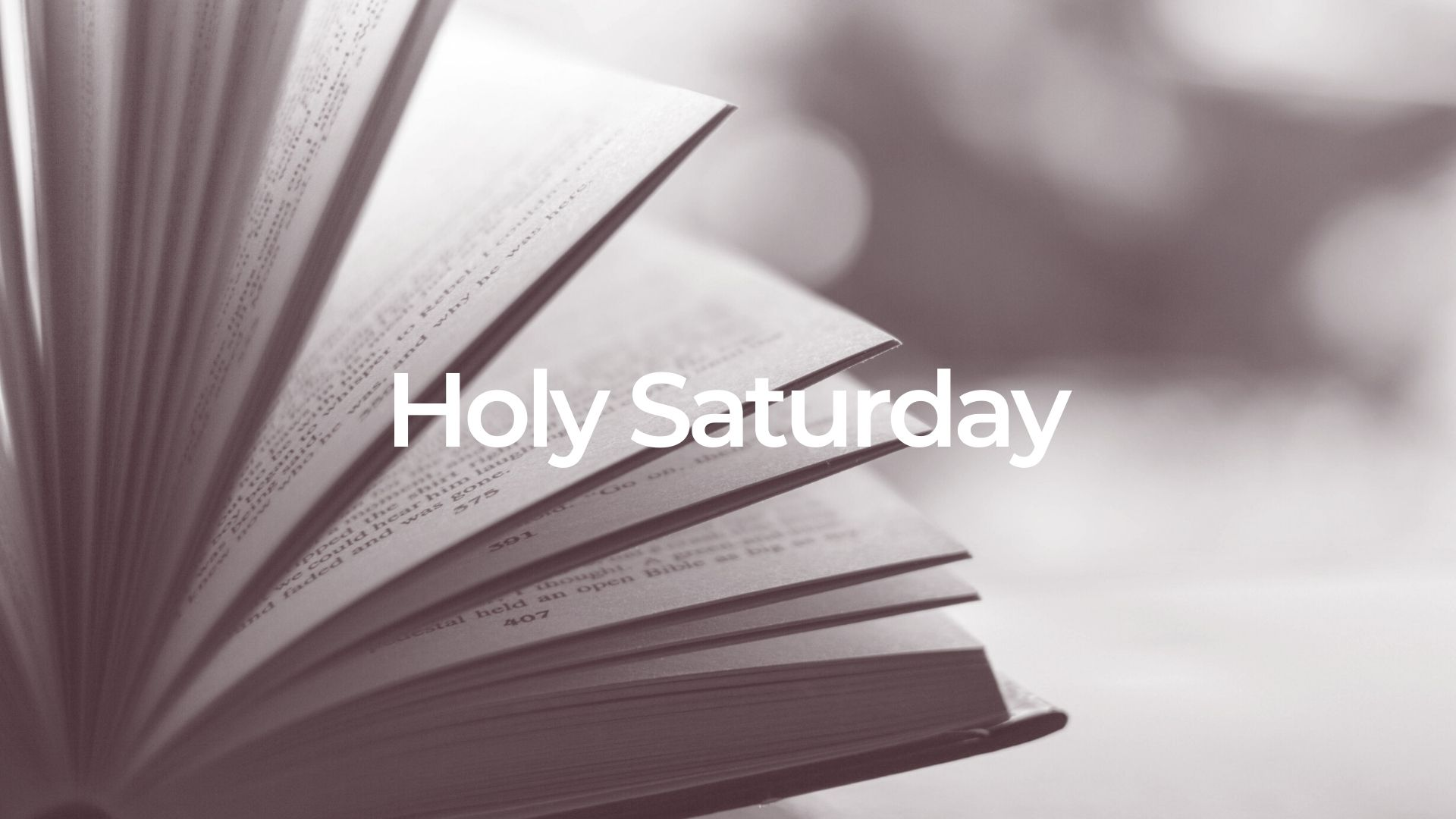 Holy Saturday: Whoever Believes In Him – John 3:14-16