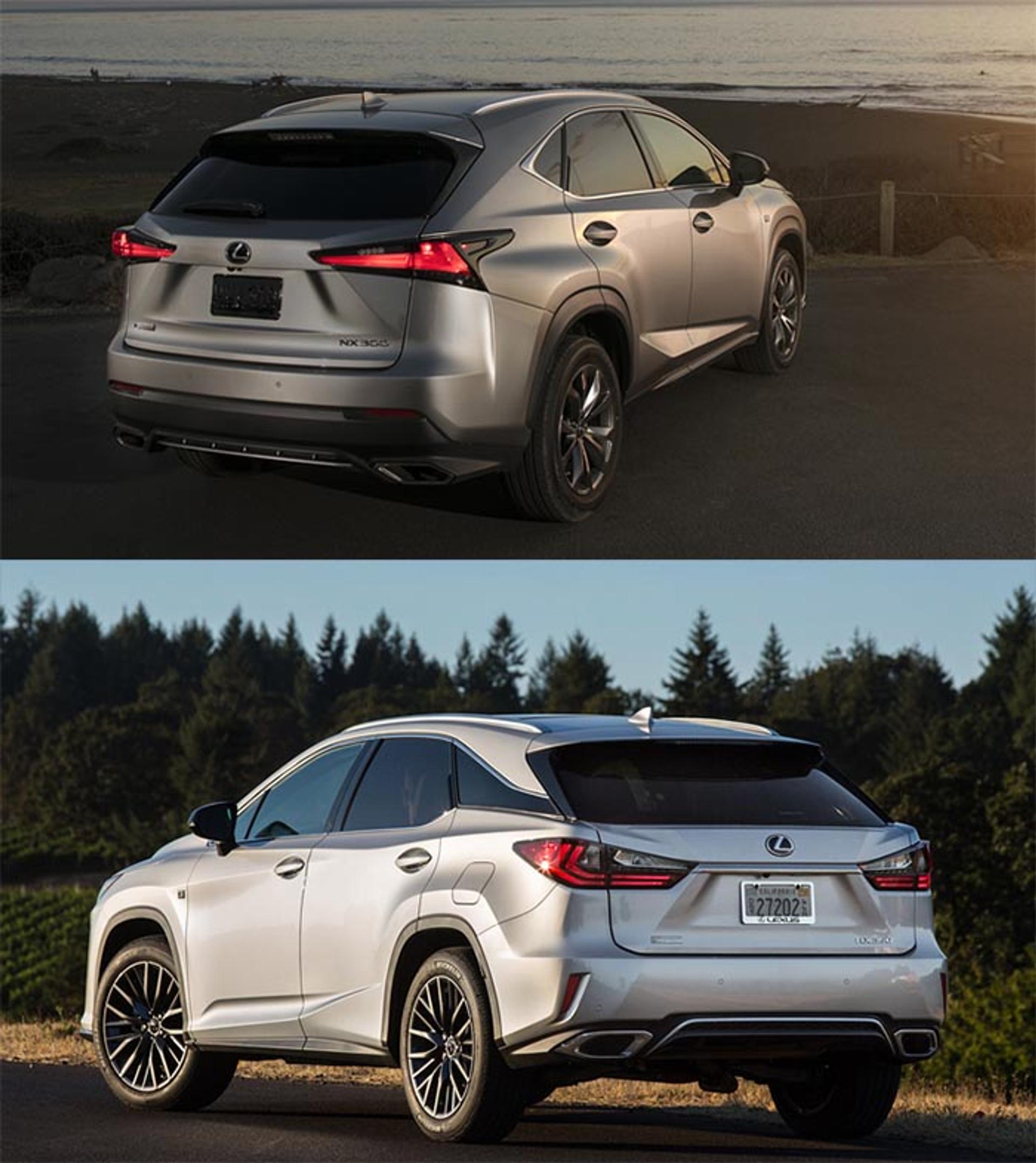 Lexus NX vs RX rear view comparison
