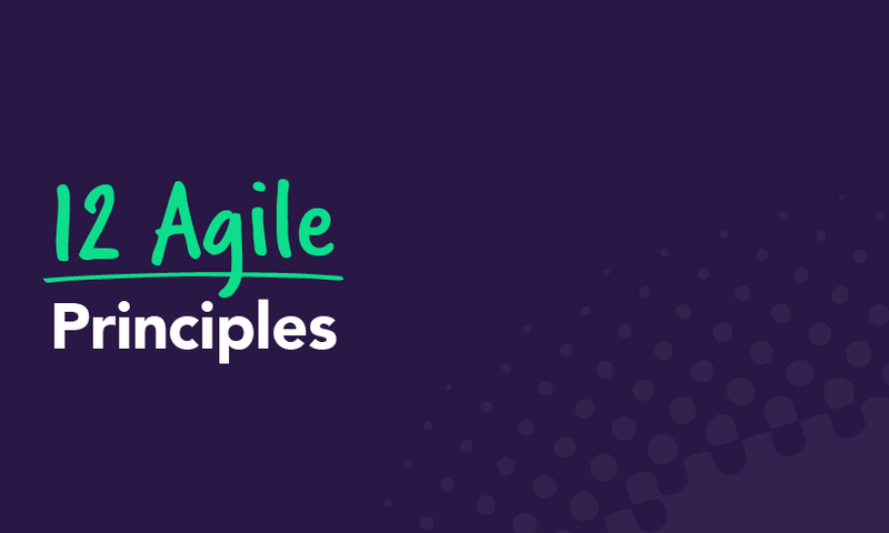 12 Agile Principles to Motivate Your Team and Delight Your Customers