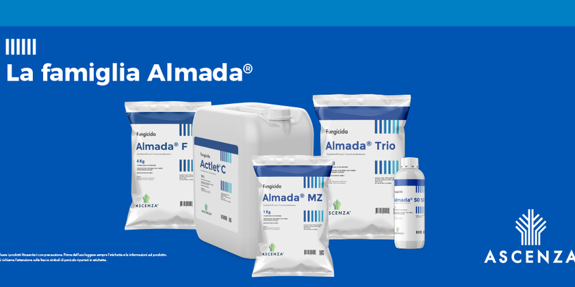 Linea Almada®: zero spazio alla peronospora
