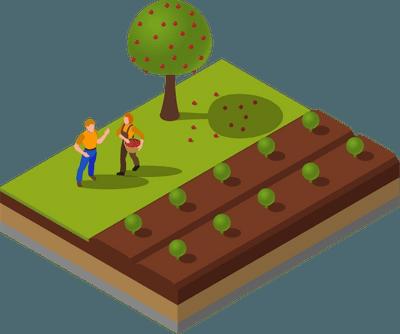 ASCENZA_Farming_PD_v03.png