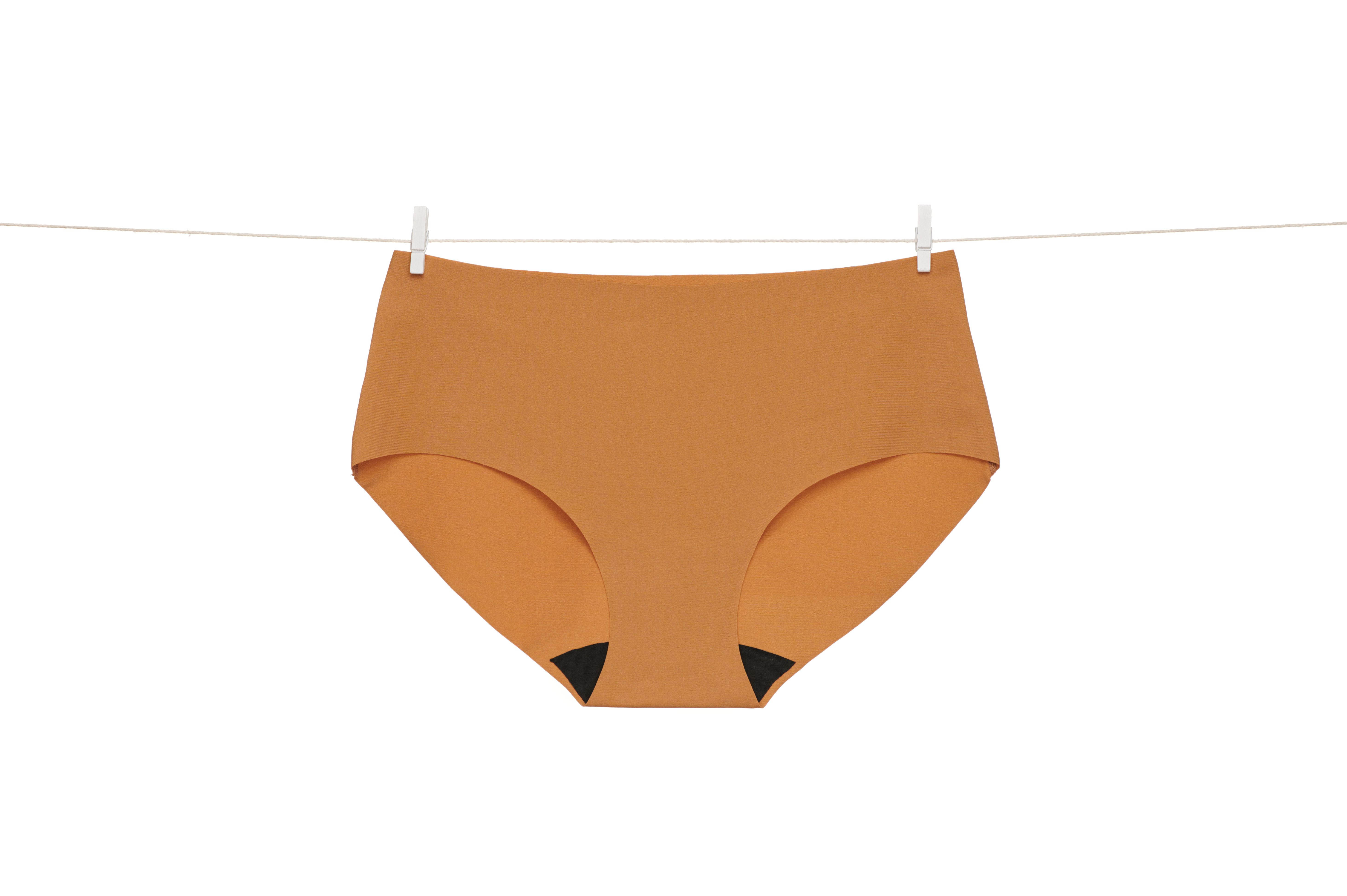 Product Image for Signature Brief, Honey