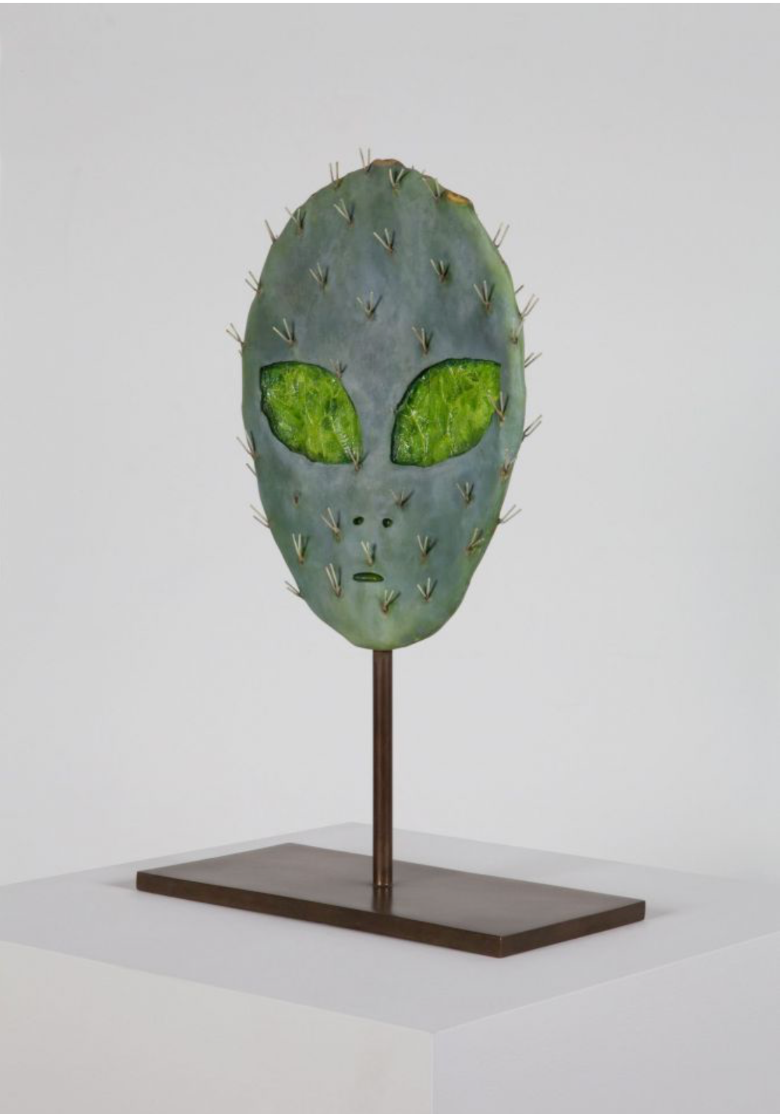 Matt Johnson, Alien Cactus, 2015