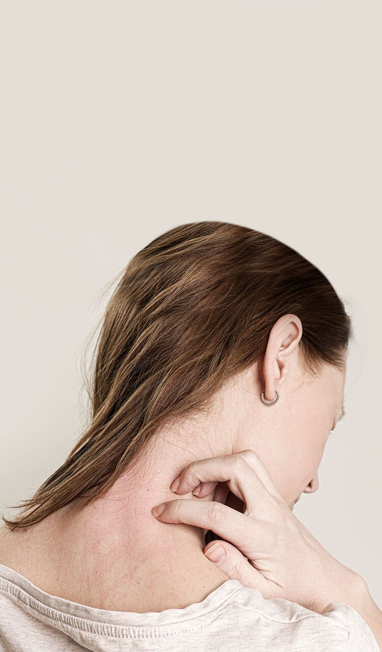 nerve block for shingles pain